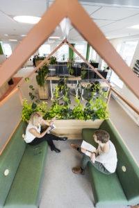 Ett växthus inne i ett kontorslandskap