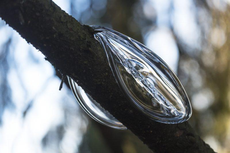 En glasblobb av Markus Emilsson som hänger på en gren.